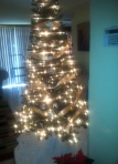Merry Christmas to All. Celebrating the birth of Jesus Christ. 2012